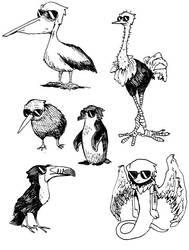 Bird daves of the world by pickychicken