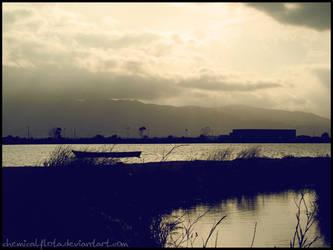 Delta del Ebro by ChemicalFlota