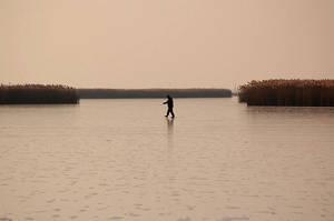 lake at winter XIV by torobala