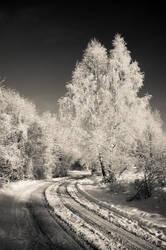 winter in BW I by torobala