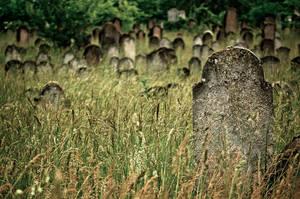 forgotten cemetery IV by torobala