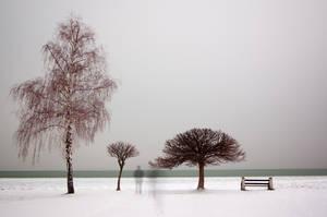 In A Frozen World by torobala