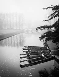 Foggy Morning In Cambridge I (BW) by torobala