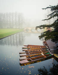 Foggy Morning In Cambridge I by torobala