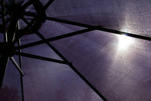 Through the parasol by foxblock