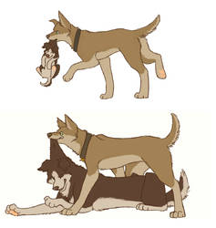 SPN dogs-Winchester Brothers by Sammaella