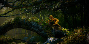 Y'shaati, the Spirit of Amazonia: First Sighting by Screwiest