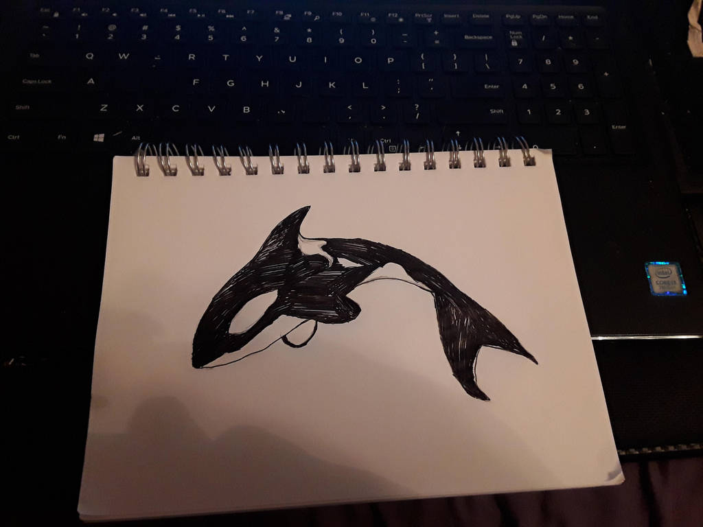 Inktober Orca by Tiamatshapeshifter