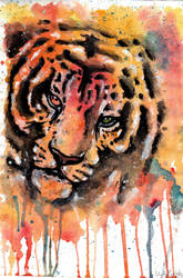 Tiger painting by YukiChan89