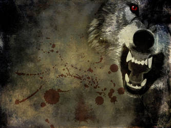 Angry wolf wallpaper by YukiChan89