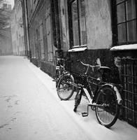 Black+White by AtXU