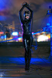 Catwoman by Rei-Doll