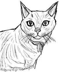 Inktober Day 10: My Cat Allie by WyreCats
