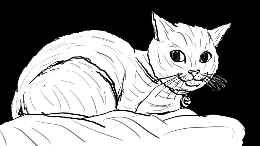 Cat by WyreCats