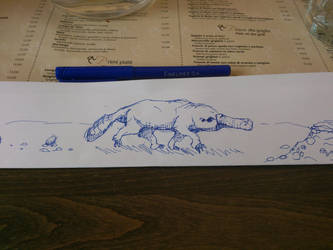 platypus sketch by realTurtleNipple