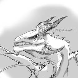 random dragon by realTurtleNipple