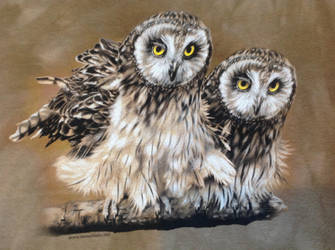 T-Shirt (tawny owls) by Gryphondrake7991