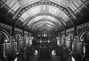Natural history museum by Phoenixstamatis