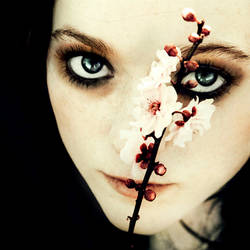 Requiem for a Dream. by CaitlinWorthington