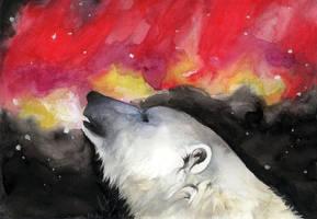 Magic in the sky by majspanda