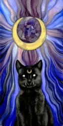 Luna by majspanda
