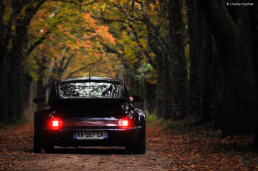 Large and Furious - II by Charles-Hopfner