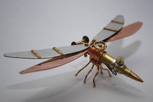 Steampunk dragonfly by hardwidge
