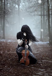 Winter's Symphony by Leafbreeze7