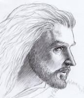 Thorin Oakenshield by devsash