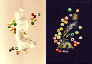 The Birds and the Beads by colleenchiquita