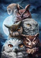 Owls squad by Yanosik
