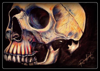 Skull_13 by MarchCoven