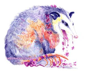 opossum breath by ladyyatexel