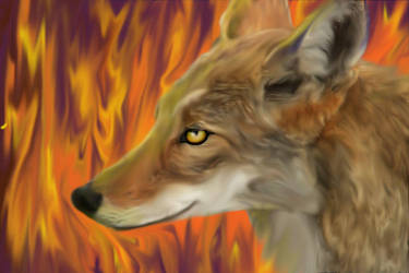 Coyote Stole Fire by HartsEase