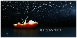 Winter Trees: The Sensibility by dimchevski