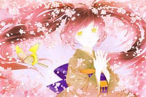 cherry blossom by conronca