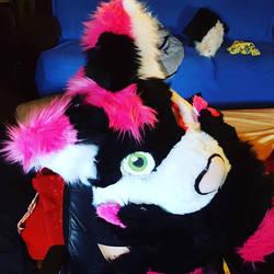 Koka the cat Fursuit by Mephonix