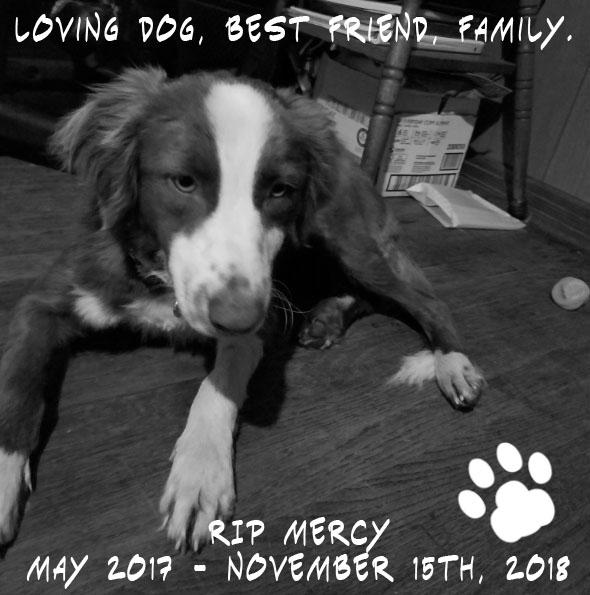 RIP Mercy by Mephonix