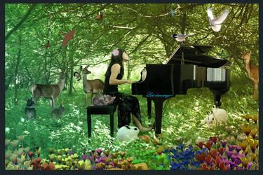 Lost Pianist by lostdrawings