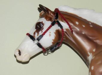 Braided stock halter by horsecrazy9356