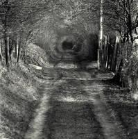 Suburban Wormhole by saabie