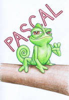Pascal The Chameleon by nudge1