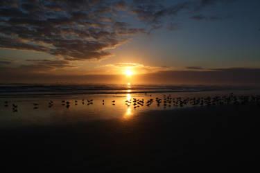 Daytona Beach Sunrise by HopelessScreenWriter