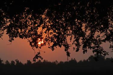 Smokey Sunrise by HopelessScreenWriter