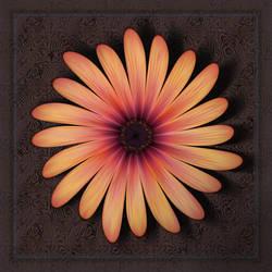 Osteospermum by aartika-fractal-art