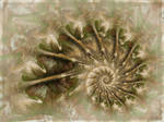 Mother of Pearl by aartika-fractal-art