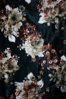 Stock - Fabric - Silk by Strawberry-N-Vanilla