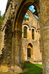 Abbaye d'Orval - Ruins 2 by ReneHaan