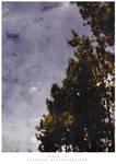 trees are green by tekhniklr