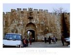 Lion's gate by tekhniklr
